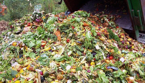 food waste in America
